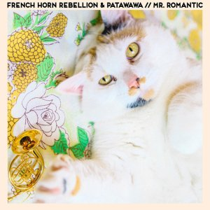 French+Horn+Rebellion+x+Patawawa+Mr+Romantic