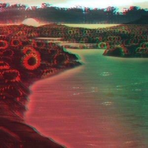phalcons-swim-away-big